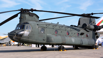 2517 - Boeing CH-47F Chinook - United Arab Emirates - Air Force