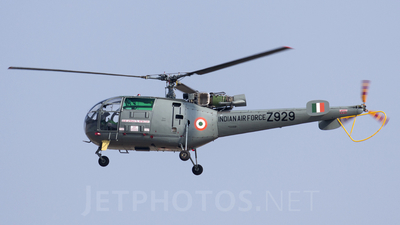 Z929 - Hindustan Aeronautics SA 316B Chetak - India - Air Force