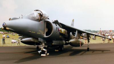 ZD379 - British Aerospace Harrier GR.7 - United Kingdom - Royal Air Force (RAF)