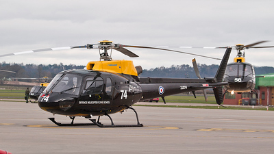 ZJ274 - Aérospatiale Squirrel HT.1 - United Kingdom - Ministry of Defence