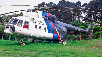 RA-27131 - Mil Mi-8MTV-1 Hip - Eagle Helicopters
