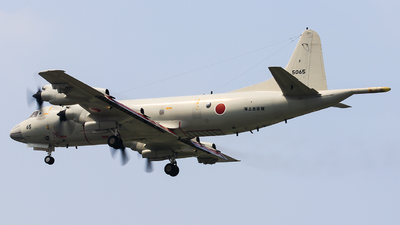 5065 - Lockheed P-3C Orion - Japan - Maritime Self Defence Force (JMSDF)