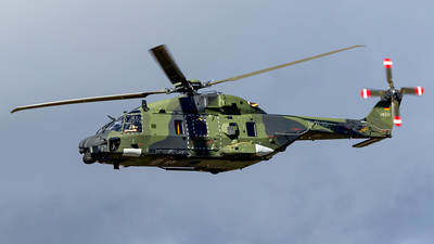 79-33 - NH Industries NH-90TTH - Germany - Army
