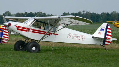 D-ECCW - Piper PA-18 Super Cub - Private