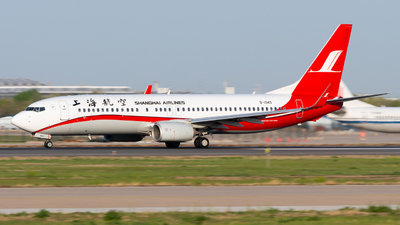 A picture of B1949 - Boeing 73789P - Shanghai Airlines - © JetblastAviation