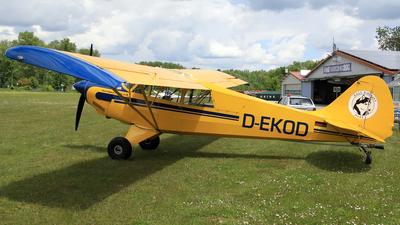 D-EKOD - Aviat A-1B Husky - Private