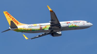 TC-CPN - Boeing 737-82R - Pegasus Airlines