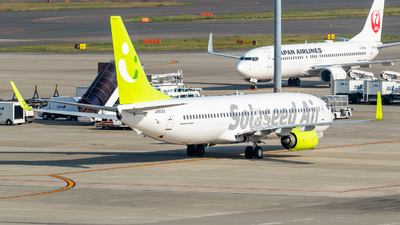 A picture of JA813X - Boeing 73786N - Solaseed Air - © B.K JEONG