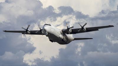 P4-LAE - Lockheed L-100-30 Hercules - Lynden Air Cargo
