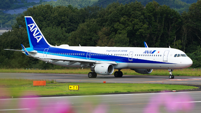 JA114A - Airbus A321-211 - All Nippon Airways (ANA)