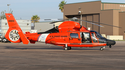 6603 - Aérospatiale MH-65C Dauphin - United States - US Coast Guard (USCG)