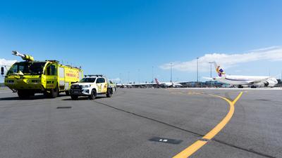 YBCG - Airport - Ramp