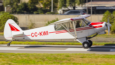 CC-KWI - Piper PA-18 Super Cub - Private