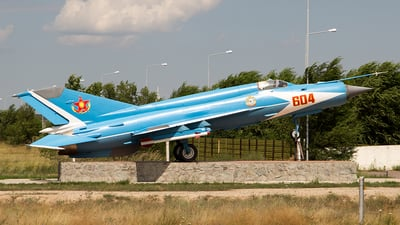 604 - Mikoyan-Gurevich MiG-21 Fishbed - Kazakhstan - Air Force