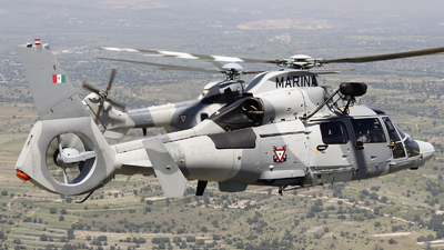 ANX-2156 - Airbus Helicopters AS565 MBe Panther - Mexico - Air Force