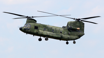 D-663 - Boeing CH-47D Chinook - Netherlands - Royal Air Force