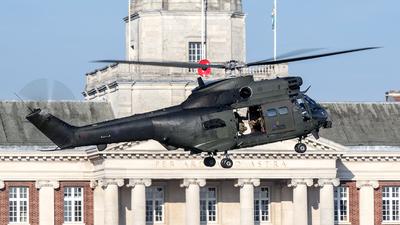 ZJ955 - Westland Puma HC.2 - United Kingdom - Royal Air Force (RAF)
