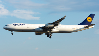 D-AIGO - Airbus A340-313X - Lufthansa