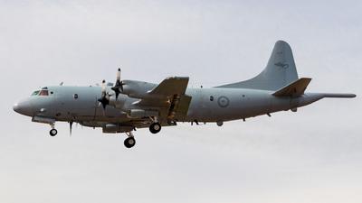 A9-660 - Lockheed AP-3C Orion - Australia - Royal Australian Air Force (RAAF)