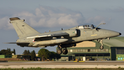MM7116 - Alenia/Aermacchi/Embraer AMX - Italy - Air Force