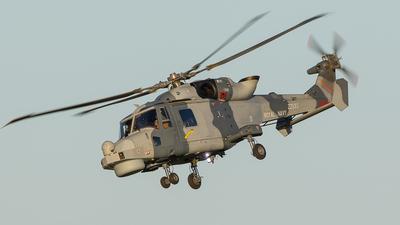 ZZ535 - Agusta-Westland AW-159 Wildcat HMA2 - United Kingdom - Royal Navy