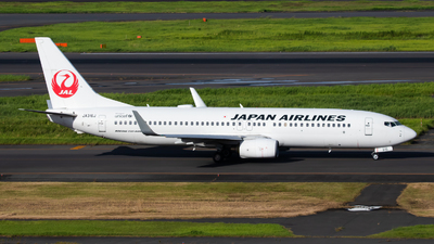 A picture of JA316J - Boeing 737846 - Japan Airlines - © Fumihiro Ono