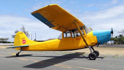 N65070 - Cessna 305A Bird Dog - Private