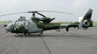 ZA776 - Westland Gazelle AH.1 - United Kingdom - Royal Marines