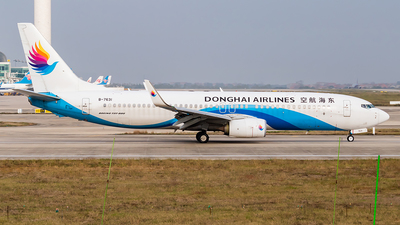A picture of B7631 - Boeing 73783Z - Donghai Airlines - © SnowMiku39