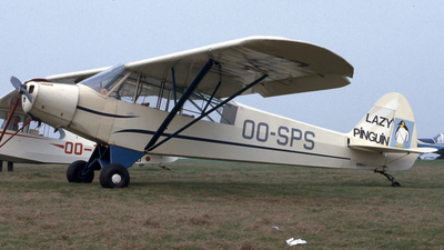 OO-SPS - Piper PA-18-95 Super Cub - Private