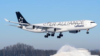 D-AIGN - Airbus A340-313 - Lufthansa