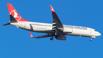 A picture of TCJHO - Boeing 7378F2 - Turkish Airlines - © Marcello Montagna spotter_napoli
