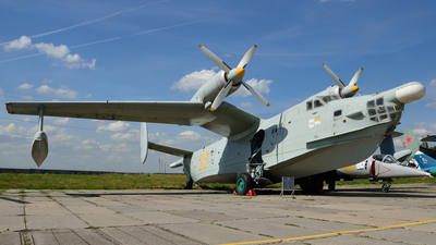 35 - Beriev Be-12 - Ukraine - Air Force