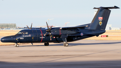 142803 - Bombardier CT-142 Dash 8 - Canada - Royal Canadian Air Force (RCAF)