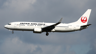 JA305J - Boeing 737-846 - Japan Airlines (JAL)