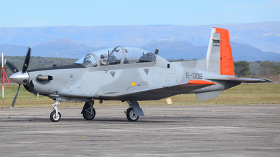 E-308 - Raytheon T-6C Texan II - Argentina - Air Force