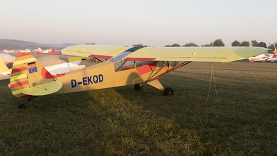 D-EKQD - Piper PA-18-95 Super Cub - Private