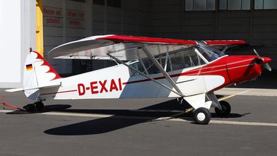 D-EXAI - Piper PA-18-95 Super Cub - HFC - Hanseatischer Fliegerclub Frankfurt
