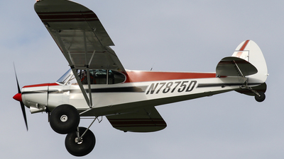 N7875D - Piper PA-18-150 Super Cub - Private
