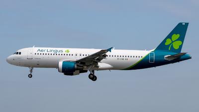 A picture of EICVB - Airbus A320214 - Aer Lingus - © Pj Mackey