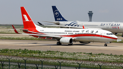 B-5369 - Boeing 737-8Q8 - Shanghai Airlines