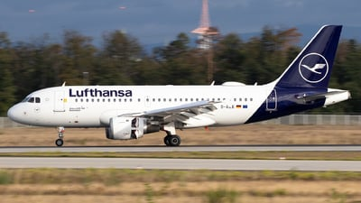 A picture of DAILE - Airbus A319114 - Lufthansa - © Julian S.