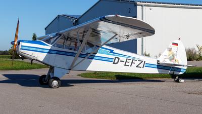 D-EFZI - Piper PA-18-95 Super Cub - Private