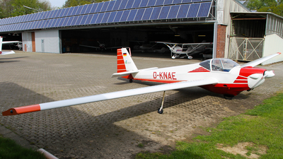 D-KNAE - Scheibe SF.25E Super Falke - Private