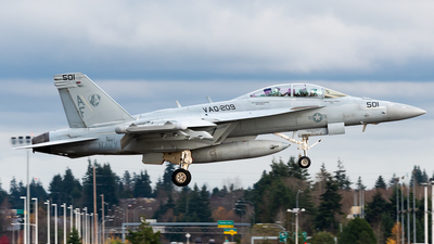 168386 - Boeing EA-18G Growler  - United States - US Navy (USN)