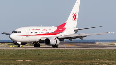 A picture of 7TVJS - Boeing 7376D6 - Air Algerie - © David Tobarra