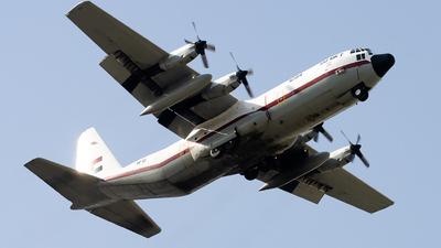 1294 - Lockheed C-130H-30 Hercules - Egypt - Air Force