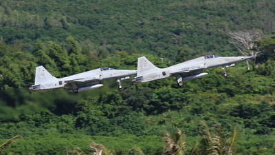 5249 - Northrop F-5E Tiger II - Taiwan - Air Force