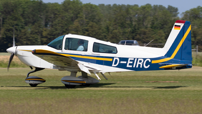 D-EIRC - American General AG-5B Tiger - Private