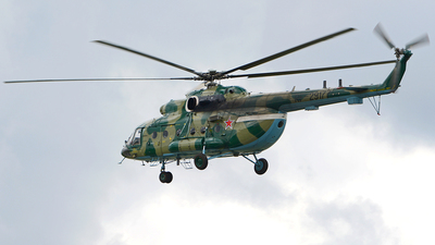 RF-29177 - Mil Mi-8AMTSh Hip - Russia - Air Force